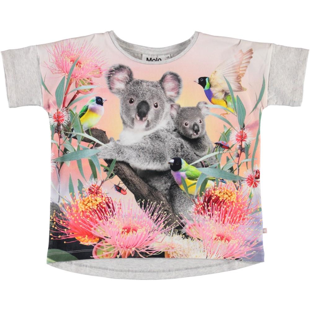 Molo Kids Lasten T-paita, Raeesa Koala Love Vaaleanharmaa