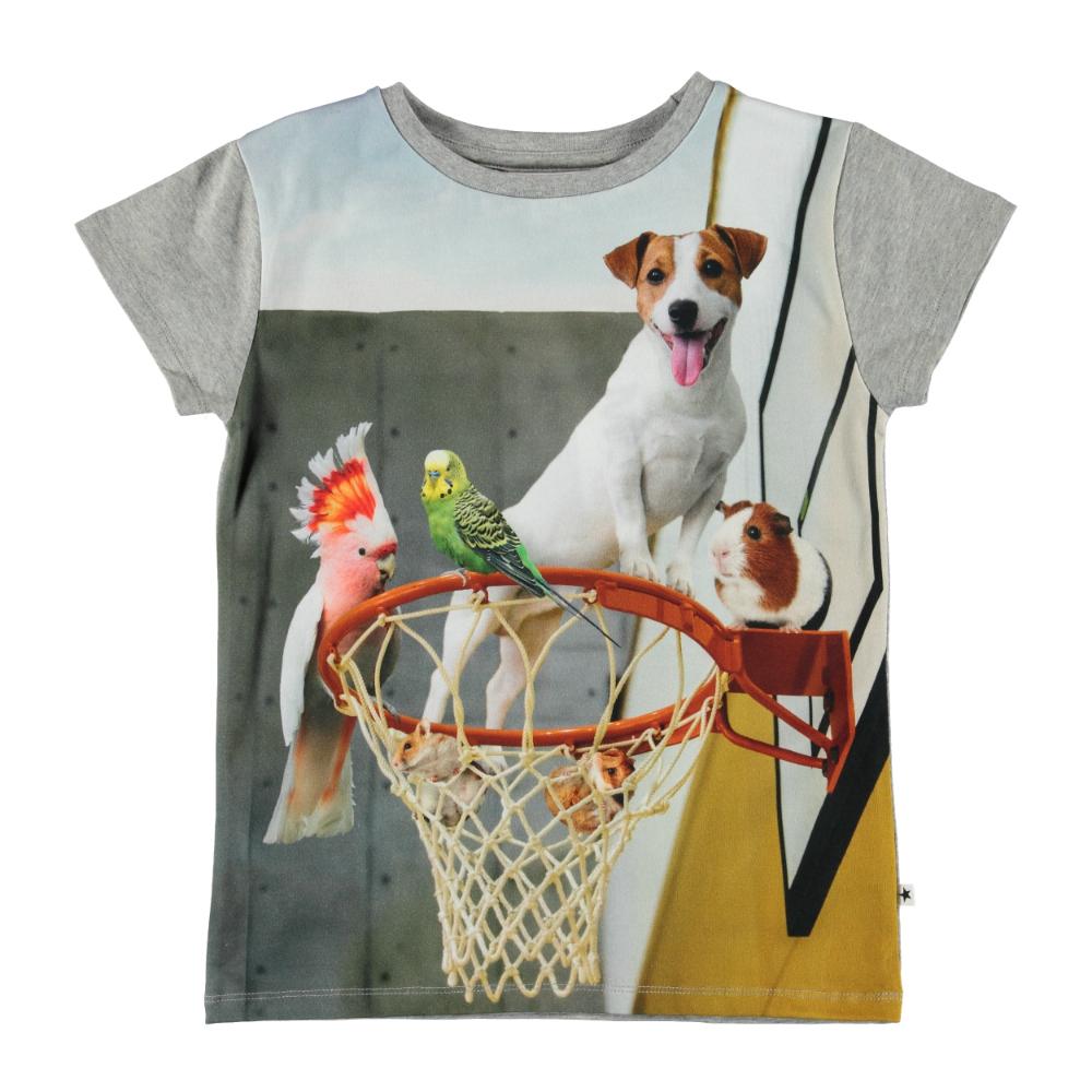 Molo Kids Lasten T-paita, Ranva Pet Escape Sininen Kuosi